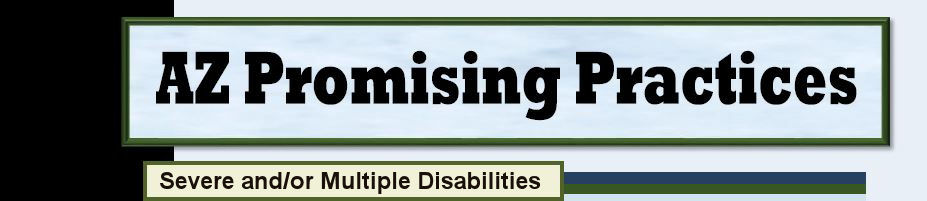Severe and/or Multiple Disabilities